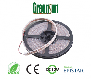 led-day-greenstar-chip-3528-NL-S3528-GS-newled-01